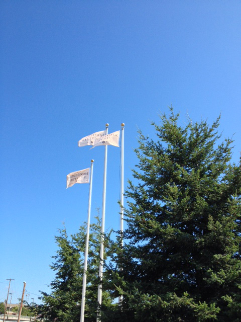 waterfront district flags.jpg